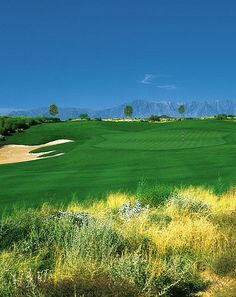 Whirlwind - Devils Claw - These Golf Courses are part of the Sonoran Suites Golf Packages & Courses in Scottsdale/Phoenix, Arizona that are available to you, your family, friends or corporate groups. Sonoran Suites offers premier vacation condo rentals and golf vacation packages in Scottsdale, Phoenix, Tucson, San Diego, Palm Springs, Las Vegas and Mesquite! Call us today at 1-888-786-7848 and let our professional golf staff book the best golf vacation possible! www.sonoransuites.com