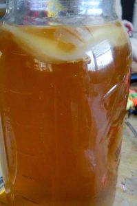 Homemade Apple Cider Vinegar from Mother and Apple Juice