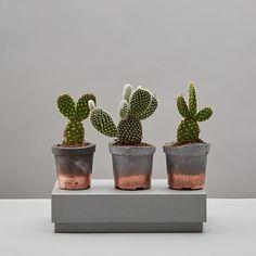 Meet our bestselling handmade concrete & copper pots. Perfect for mini cacti 💚🌵🌱🍃🌴🌿 || geo-fleur.com #geofleur ||