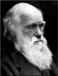 FAMOUS SPOONIE: Charles Darwin was a nineteenth century English naturalist famous for his theory on natural selection of the fittest.  When he came back to England after travels to South America and Pacific Islands, he started suffering from what may well be fibromyalgia. Fatigue, pains, abdominal troubles, headaches, insomnia, anxiety, dermal problems used to flare up at times of stress such as attending meetings trying to defend his theory of evolution.