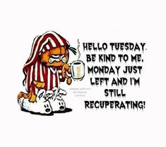 Hello Tuesday, Be Kind To Me tuesday hello tuesday tuesday pictures tuesday images Tuesday Quotes Funny, Funny Good Morning Memes, Tuesday Humor, Funny Quotes, Funny Memes, Funny Weekend, Monday Humor, Weekend Quotes, Funny Friday