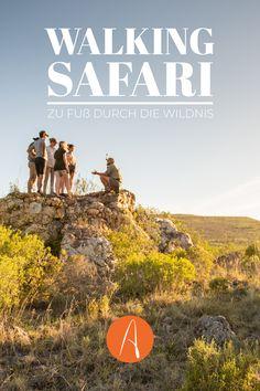 Walking Safaris liegen voll im Trend! Umweltfreundlicher geht's nicht mehr? Oh doch! Auf unseren Walking Safaris darfst du den Rangern über die Schulter gucken und bringst dich ganz neben bei bei der Natur- und Tierschutzarbeit des Reservats ein. Auf unseren nachhaltigen Safaris bekommst du einen Blick hinter die Kulissen - Egal, ob in Südafrika, Namibia, Uganda oder Botswana. Safari, Namibia, Walking, Africa Travel, Far Away, Uganda, How To Introduce Yourself, How To Fall Asleep, Wilderness
