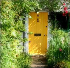 Yellow front door with mail slot & knocker helps create charming entrance amid the flowers & vines.