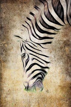 Wildlife art. Zebra by Steve McKinzie