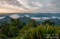 L3M2AS1 Part D PHOTO 4 –  DESTINATION MT WARNING - The view from the summit (7792). Location: Mt Warning, NSW. Camera: Nikon D7100. Lens: VR Nikkor 16-85mm f3.5-5.6G. Focal Length: 16mm. Mode: Aperture Priority. Flash: Off. WB: auto. ISO: 800 (Manual). Aperture: f/16  Shutter Speed: 1/100s. Metering: Matrix metering. Technique: Tripod.