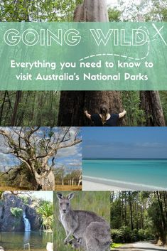 A comprehensive 2500 word guide with the information you need to plan trips to Australia's National Parks. Visit Australia, Western Australia, Australia Travel, Overseas Travel, Travel Abroad, Travel Tips, Travel Alone, Plan Your Trip, Trip Planning