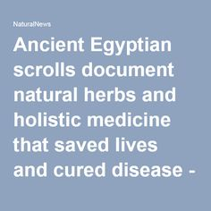 Ancient Egyptian scrolls document natural herbs and holistic medicine that saved lives and cured disease - NaturalNews.com