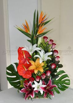 Origin, Belief and Care of Red Roses – Ideas For Great Gardens Tropical Flowers, Tropical Floral Arrangements, Large Flower Arrangements, Exotic Flowers, Large Flowers, Floral Centerpieces, Beautiful Flowers, Indoor Flowers, Purple Flowers