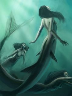 Shark-like tails on these mermaids