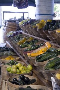 Growing vegetables in North Carolina - what to plant...when!