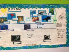 """Ocean habitat pictorial (diagram) input. This concept by G.L.A.D introduces tough vocabulary for kids paired with visual representation. No need to """"dumb"""" down curriculum."""