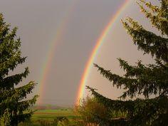 The Colors Of Rainbow - A Poem By venus fernandez