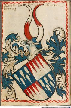 Scheibler'sches Wappenbuch Süddeutschland, um 1450 - 17. Jh. Cod.icon. 312 c  Folio 224