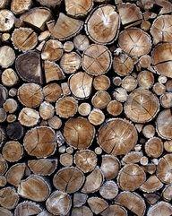 Lotsa wood