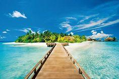 my summer dream holiday