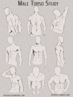 Anatomy Drawing Male Torso/Chest Study by TIFFASHY - Anonymous said: Hello, if you have the time, could you explain how hair lines work? specifically on men because I am struggling :-( Answer: Well, I can give you some tips based on how I do it. Drawing Body Poses, Body Reference Drawing, Human Figure Drawing, Drawing Reference Poses, Drawing Tips, Drawing Poses Male, Drawing Faces, Hand Drawings, Male Pose Reference