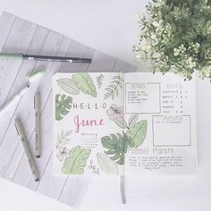 #bulletjournal #monthlies #graphic