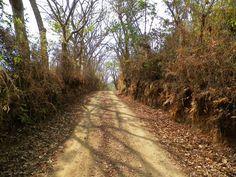 Toutes les tailles | COSTA RICA 226b (Copier) | Flickr: partage de photos!