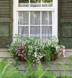 Signs of the Season: Summer Flowers | Southern Lady Magazine