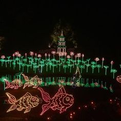 Bellingrath Gardens - Magic Christmas in Lights