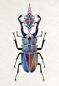 Manoou #beetle #symmetrical
