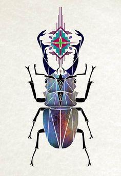 Manoou #beetle #symmetrical