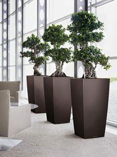 Lechuza Cubico Planters Interior Office (Espresso)