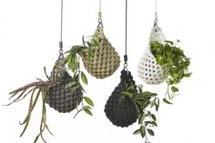 Knotted Plant Pod. No instructions available. Pinning for inspiration, probably to crochet later on as a diy.