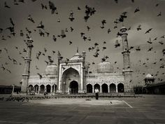 Andreas H. Bitesnich Jama Masjid Dehli India />Included in the book INDIA Nude Photography, Black And White Photography, Fine Art Photography, Portrait Photography, Leni Riefenstahl, Elephant Camp, Humayun's Tomb, Jama Masjid, India Street