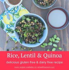 Recipe: Gluten Free Rice, Lentil and Quinoa Salad - Wheat Free Mom Lentil Quinoa Salad, Lentils And Quinoa, Quinoa Salad Recipes, Quinoa Dishes, Gluten Free Vegetarian Recipes, Gluten Free Rice, Dairy Free, Salads To Go, Free Mom