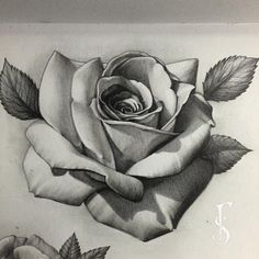 22 Ideas Tattoo Sleeve Designs Sketches Thigh Tat For 2019 Rose Drawing Tattoo, Tattoo Sketches, Tattoo Drawings, Tattoo Sleeve Designs, Sleeve Tattoos, Rose Zeichnung Tattoo, Tattoo Stencils, Tattoo Fonts, Black And Grey Tattoos