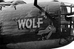 "B-24 Liberator ""The Wolf"" Nose Art 308 Bomb Group"