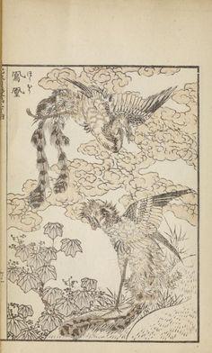 At head of title on cover: Katsushika Iitsu iboku Japanese Phoenix, Japanese Bird, Vintage Japanese, Art Occidental, Katsushika Hokusai, Japanese Patterns, Japanese Painting, Irezumi, Oriental