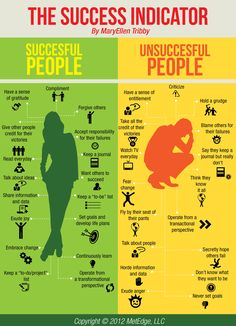 Success Indicator Infographic