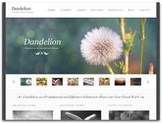Clean and simple web design Simple Web Design, Beautiful Website Design, Modern Design, Website Design Company, Website Designs, Pinterest Photography, Affordable Website Design, Professional Website, Dandelion