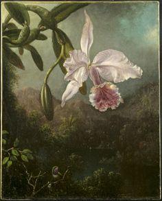 Heade, Martin Johnson (1819–1904)