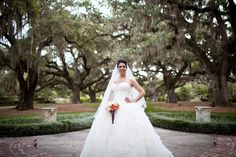 Pawleys Island Bridals at Brookgreen Gardens via Carmen Ash Photography #myrtle beach #wedding
