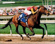 Best Pal in 1992 the Santa Anita Handicap.