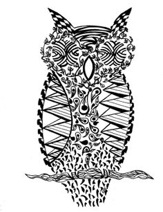 Owl pen and ink illustration black and white