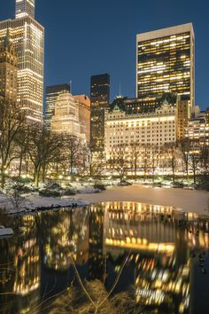 Where is kevin Home Alone Scene in Central Park, NYC Manhattan New York During winter Snow storm with City Lights and Pond Water reflection. Kevin Home Alone, Manhattan New York, Water Reflections, Curious George, Winter Snow, City Lights, Buy Frames, Central Park, San Francisco Skyline