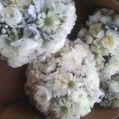 cloudy puffs of actinotus (flannel flower), ranunculus, carnations, gypsophila (baby's breath) and senecio (dusty miller)