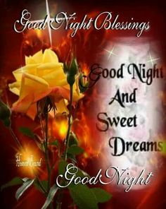 Good Night Everyone Sweet Dreams and God Bless All of You...