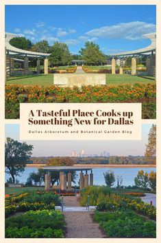 A Tasteful Place Cooks up Something New for Dallas - Dallas Arboretum Blog