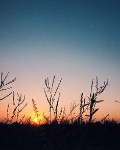 "superKinder 🇷🇴🇬🇧 on Instagram: ""#sunset #bluesky #beautiful #summer #july #endofday #europe #romania #beautifulromania #visitromania #constanta #navodari #nature #cool…"" Visit Romania, End Of Days, Europe, Celestial, Sunset, Nature, Outdoor, Beautiful, Instagram"