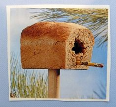 What a clever idea for stale bread. Put a post in the ground, stick bread on post, hollow out an opening and stick a pencil through the front for the perch. The birds will love it.