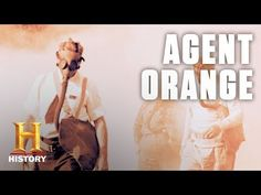 Agent Orange Update: New US Legislation is Good News for Vietnam Vets American Revolution Battles, Christmas Truce, Marine Corps Ball, We Are The Mighty, Northern Iowa, My War, Sports Day, Vietnam Veterans, One In A Million