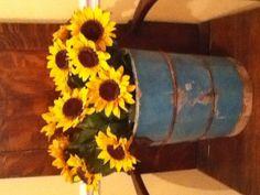 Sunflowers in an old ice cream bucket