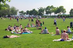 Battery Park City Esplanade's Nelson A. Rockefeller Park: Lawns, Ping Pong and Board Games  #BatteryParkCity #NYC #Queens #NewYork