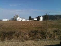 Amish Dairy Farm in East Earl, Lancaster County, PA