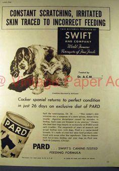 Pard Dog Food 1937